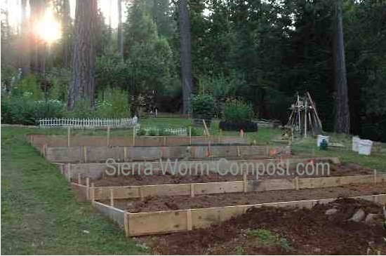 Vegetable Garden Ideas New England a garden layout to maximize gardening success