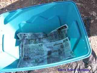 newspaper lining the worm bin